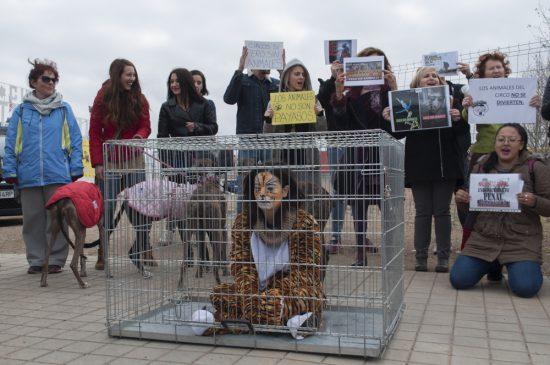 Concentración contra los circos con animales 7