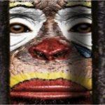 Concentración y campaña en Change.org contra el circo con animales en Ciudad Real