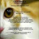 Ciudad Real: Sábado Felino en La Fábrica