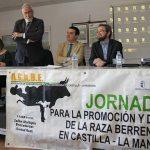 Brazatortas ha centrado hoy el interés nacional de los ganaderos de raza berrenda