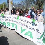 Manifestación ASAJA en Ciudad Real 8