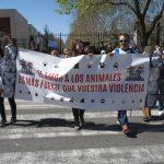 manifestación contra el maltrato animal 0