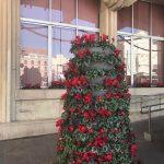 plaza mayor semana santa 3