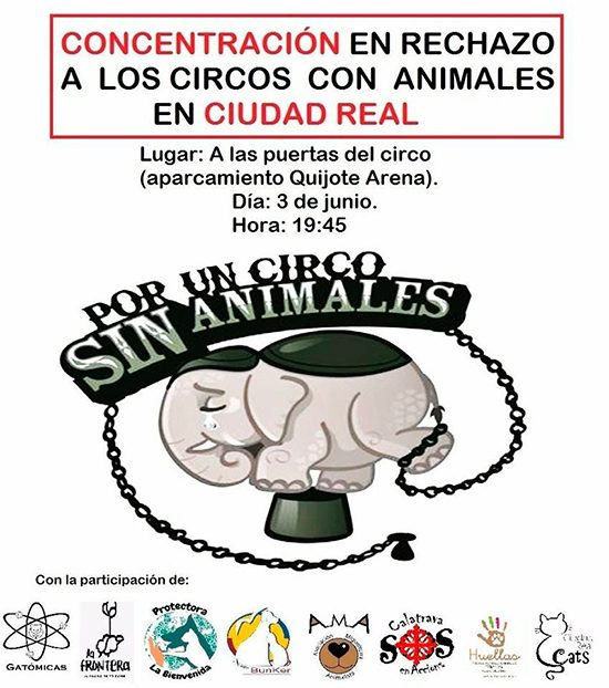 concentracion-circo-sin-animales
