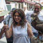Ciudad Real: Piden que no se exhiban aves rapaces en los mercadillos medievales