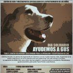 Jornada solidaria en Saupark para ayudar a Gus
