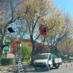 Las cámaras del sistema foto-rojo continúan en pruebas en cuatro semáforos de Ciudad Real