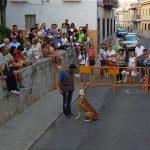 Folclore, música pop y 30 especies caninas protagonizan el arranque de las fiestas de San Roque