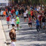 Miles de visitantes en el penúltimo de los Encierros de Almodóvar del Campo
