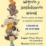 La Plaza Mayor acogerá el 28 de octubre la I Feria de adopción y sensibilización animal de Ciudad Real
