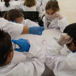 La UCLM participará en la jornada 'Museo de Ciencia por un día' con diferentes talleres y demostraciones científicas