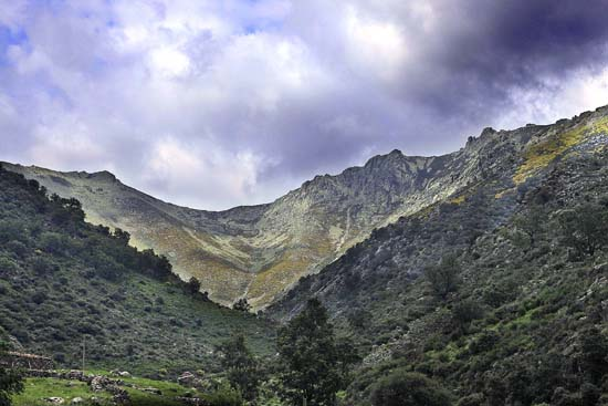 villarrubia montes
