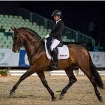 Un caballo criado en Brazatortas se proclama campeón del mundo de doma clásica de pura raza española