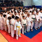 Unos 250 karatecas participan en el II Torneo de Karate Infantil Ciudad Villarta de San Juan