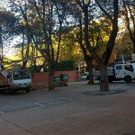 El AMPA del Carlos Eraña suspende la concentración tras la decisión del Ayuntamiento de adelantar la poda de los árboles