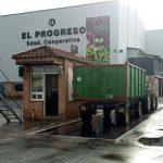 Cooperativa El Progreso generalizará su recogida de aceituna este 26 de diciembre, esperando una cosecha de 7 millones de kilos