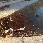 Ciudad Real: El lago de los sucios
