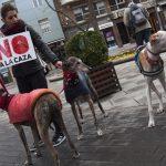 Manifestación contra la caza con galgos - 10