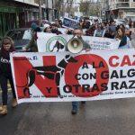 Manifestación contra la caza con galgos - 5