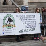 Manifestación contra la caza con galgos - 11