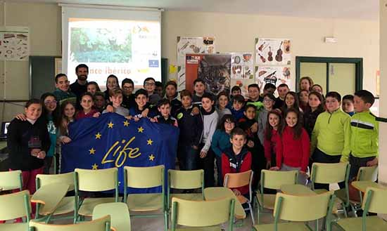 Campaña educativa lince iberico 1