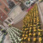 Ciudad Real: Con flores a Cervantes
