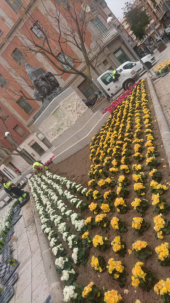 flores-cervantes-1
