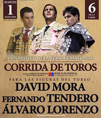 toros4