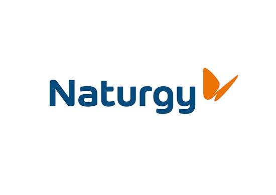 Naturgy_Pantone_Principal