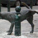 ¿Y lo de llevar botellas con agua para diluir el orín?: Está prohibido que los perros miccionen en aceras, fachadas o farolas, aunque sea lo habitual