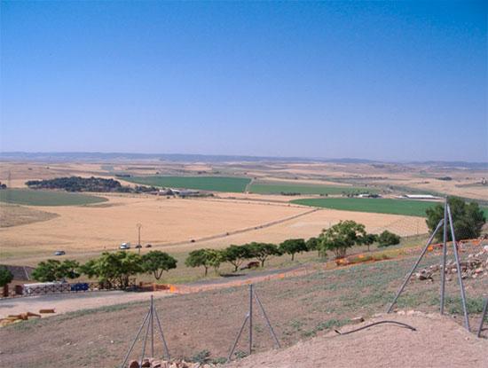 Zona donde se apostó el ejército de del Califa Yusuf Al-Mansur estaba formado por voluntarios andaluces, Benimerines y la nobleza Almohade. Su número se estima en unos 30.000