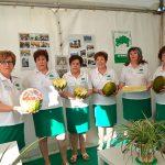 """""""Las mujeres de AFAMMER sabemos la importancia que tiene el melón en la economía de las familias de Membrilla"""""""