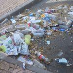 Ciudad Real: La Plataforma reclama limpieza en el posvermú y que el equipo de Gobierno realice campañas de concienciación