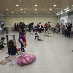 Ciudad Real: El salón de los gatos