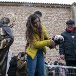 Las gallinas moñudas holandesas se llevan la estatuilla de San Antón