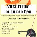 La Casa de la Ciudad acogerá una nueva edición del Salón Felino de Ciudad Real