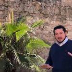Fernández propone remodelar y actualizar la muralla de Ciudad Real