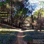 Puertollano: Ruta senderista de Ecologistas por Fuensanta-Villalgordo del Júcar (Albacete)