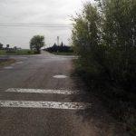 Ciudad Real: Advierten del peligro de una señal de Stop oculta por la vegetación en la carretera de Las Casas