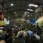 Ciudad Real: Suspendidas las procesiones de la tarde del Jueves Santo
