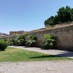 Maleza en la muralla de Ciudad Real