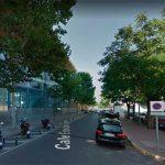Ciudad Real: El follaje que tapaba una farola, determinante en la condena al Ayuntamiento a indemnizar a una mujer que tropezó con una baldosa defectuosa